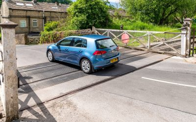 Road Crossing In Action